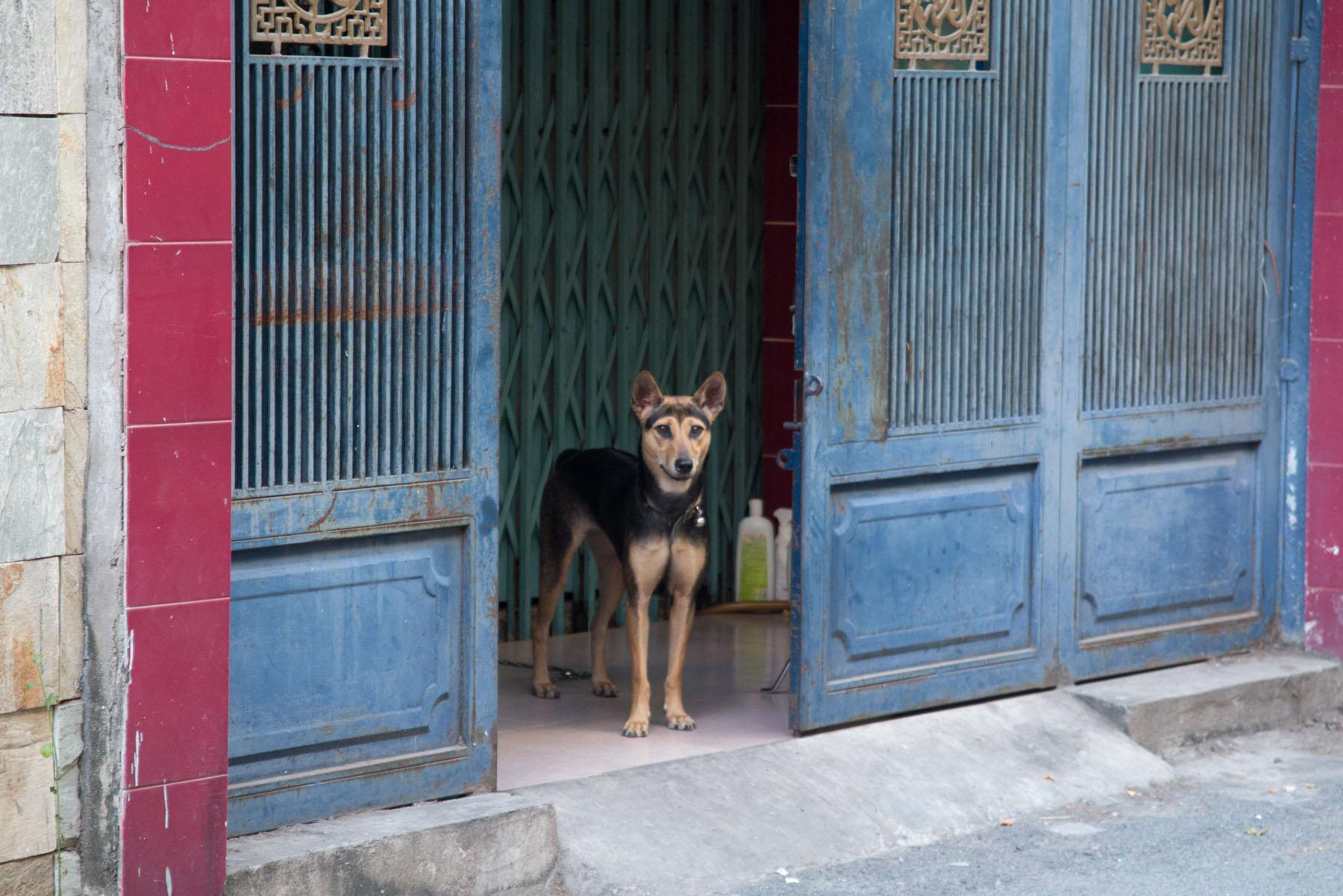 VedrosStudio_Vietnam_04